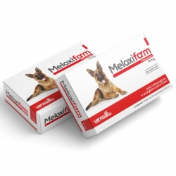 Meloxifarm 6 mg
